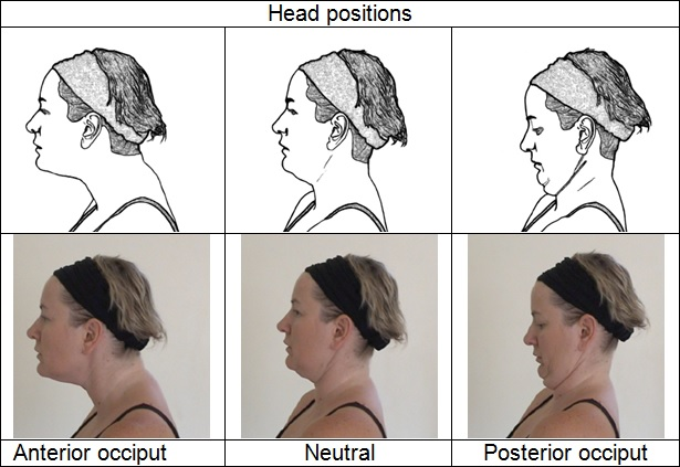 1.3 Techniques For The Head, Cervical And Upper Thoracic ...